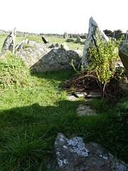 P1090963 Cashel yn Ard, isle of man (1) (archaeologist_d) Tags: isleofman chamberedtomb neolithic 2000bc fabulous cashelynard archaeologicalruin archaeologicalsite