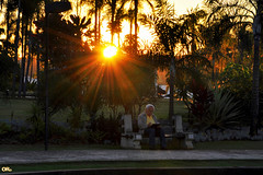 No time for the sunset (Otacílio Rodrigues) Tags: lagosul brasília capital brasil oro homem man banco bench sol sun pôrdosol sunset jardim garden árvores trees tablet pontão calçadão promenade viagem travel turismo tourism topf25