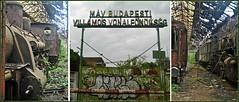 MAV Budapest @ Istvantelek (Loco Steve) Tags: istvantelek mav budapest abandoned locomotives steam hungary