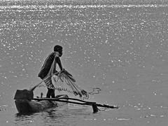 fisherman (heinzkren) Tags: srilanka fischer fisherman katamaran einbaum schwarzweis noiretblanc biancoetnero blackandwhite monochrome wasser see boot schiff arbeit mann man reflection spiegelung water boat