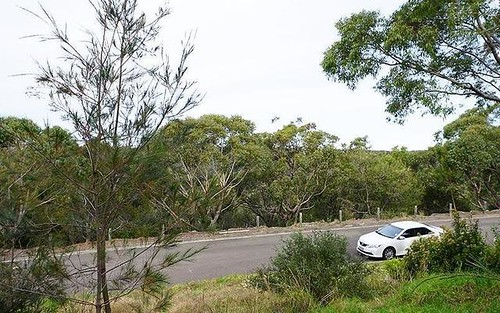 11 Foreman Pl, Barden Ridge NSW 2234