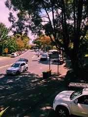 Sunny day traffic (Markus Jaaske) Tags: street travel car tree drive road traffic asphalt day vehicle outdoors daylight action hurry no person australia sydney sunny transportation system