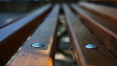 Pregos (XaninhoXano) Tags: cadeira pregos