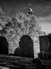 (Mr. Tailwagger) Tags: leica m240 tailwagger concord ma graveyard church elmaritm 90mm steeple colonial
