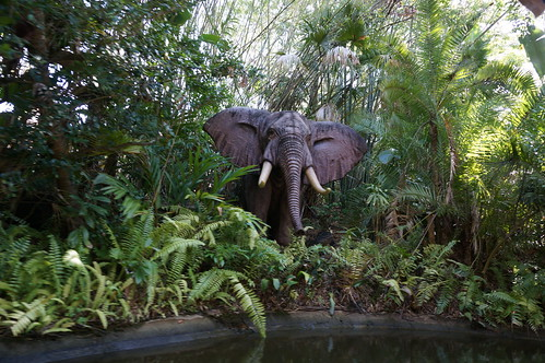 "Walt Disney World: Elephant • <a style=""font-size:0.8em;"" href=""http://www.flickr.com/photos/28558260@N04/34750293995/"" target=""_blank"">View on Flickr</a>"