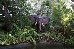 "Walt Disney World: Elephant • <a style=""font-size:0.8em;"" href=""http://www.flickr.com/photos/28558260@N04/34750293995/"" target=""_blank"">View on Flickr</a>"