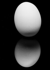 Leaning Egg (Explored) (melmark44) Tags: photographer photography creative light gradient inexplore explore egg reflection bw strobist blackandwhite shadow reflective reflected texture structure highlights mirror onblack mirrored acrylic blackacrylic closeup ocf offcameraflash tabletop tabletopphotography product stilllife limostudio westcott rapidboxstrip deflectorplate eggcrategrid canon 580exii yongnuo yn622ctx canoneos5dmarkiv 5d 5dmkiv 5dmarkiv 5d4 black reflectivedisplaytablebackgroundboard ef100mmf28macrousm macro eggshell shell speedlite speedlight flash breakfast
