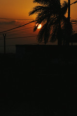 Cuban twilight (marin.tomic) Tags: cuba kuba cuban sunset silhouette trinidad palm sun travel nikon d90 tropical tropic caribbean