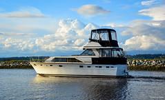 Boating on Nicomekl River - Port Elgin (1 of 3) (SonjaPetersonPh♡tography) Tags: surrey southsurrey britishcolumbia canada river nicomeklriver boat boating vessel portelgin elginheritagepark riverscape nikon nikond5200