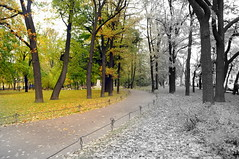 DSC_3730 (Dmitry Mahahurov) Tags: hometown stpetersburg питер северная столица россия russia mahahurov махахуров