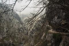 Ruta del Cares. Picos de Europa (Juan R. Ruiz) Tags: rutadelcares cares riocares trekking walking routes rutas picosdeeuropa cantabria asturias león spain españa europe europa nature naturaleza canon canoneos60d eos60d town