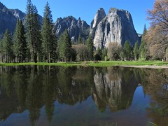 Yosemite Cathedral Rocks Reflection (Explored) (claypeoples) Tags: yosemite national park california american west united states valley granite glacier pond lake water alpine pine tree reflection landscape scenery scerene peaceful spring meadow