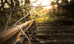 Rusty (--Conrad-N--) Tags: reflection rusty rails railway bokeh dof low perspective sony sunset old steel plants a7rm2 za zeiss