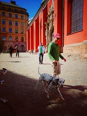 Architecture People Built Structure Building Exterior Real People Outdoors Day City Sweden People Watching Stockholm Streetphotography City Life Dalmatian Dog Dog Walker at Jussi Björlings Allé (shazell212) Tags: architecture people builtstructure buildingexterior realpeople outdoors day city sweden peoplewatching stockholm streetphotography citylife dalmatiandog dogwalker