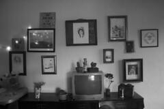 El club (bransilva) Tags: bw blanco y negro refri desk escritorio paisaje perrito carretera