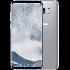 galaxy s8 silver italia (Photo: vikishop italia on Flickr)