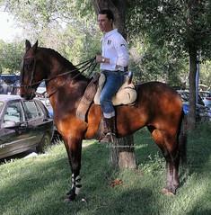 Mundo del caballo.Carrera de cintas-Alameda (Málaga) (lameato feliz) Tags: caballo jinete alameda brindas