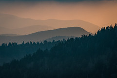 Smokies (Explored 5/18/17) (APGougePhotography) Tags: sunset mountains haze smoky smokymountains gsmnp great national park clingmans dome tennessee shiloette shadows nikon adobe adobelightroom lightroom north northcarolina carolina d600
