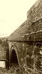 Bradley Viaduct  (Huddersfield   Newtown - Mirfield  old railway) (dave_attrill) Tags: huddersfield newtown hillhouse mirfield lmsr london midland scottish railway disused line goods only branch trackbed west yorkshire riding cycle path foothpath ncn connection sheffieldtobradford bradley viaduct april 2017 sepia monochrome
