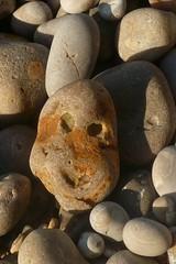 Content (mistigree) Tags: caillou pierre galet normandie étretat visage