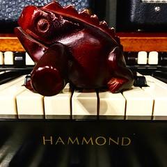 Lily Pad (Pennan_Brae) Tags: keyboardist keys recordingsession recordingstudio vintage keyboards keyboard organist recording musicphotography musicstudio frog hammondb3 hammondorgan hammond organ
