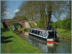 Cameo on the Canal (Jason 87030) Tags: narrowboat naptononthehill warwickshire northants northamptonshire boat braunston reflection water canal guc oxfordcanal grandunioncanal sony a6000 ilce nex flickr tag man alpha 16000 sunny weather light bright vessel craft nice rare pretty exclusive capture explore exist amazing pro amateur snap photo super great fantastic may 2017