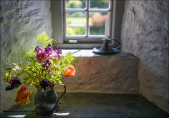 FRESH FLOWERS FROM THE GARDEN (Barry Haines) Tags: cornwall sony a7r2 a7rii zeiss zm distagon 35mm a gentle breeze office tintagel post flowers cornish bluebells distagont1435