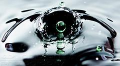 Droplet (anjabrits) Tags: droplet highspeedsync hss liquid photography splash splashphotography water watersplash waterdrop liquidart reflection anjabritsphotography colorful formations studio macro closeup wet serenity calm action abstract