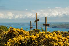 DSC_0275 (shieladixon) Tags: walking nature unspoiled coast bluesky wales coastal path welsh