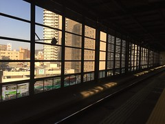 station window (Hayashina) Tags: japan morioka platform window station