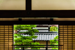 Kyoto, Japan (David Ducoin) Tags: asia boudhism door graphic japan religion shinto shrine temple window kyoto kyotoprefecture jp