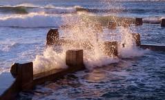 Sunrise glow on waves (astrogirl969) Tags: fujifilm xe1 fujifilmxf1855f284r sunrise morning wave water pool ocean blue adobecameraraw orange colourcontrast wavepool dawn coogee rossjonesmemorialpool hightide 500views postprocessed 15faves