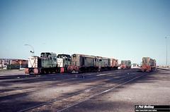 1302 B1606  A1502  F46  F43 Y1118  A1505 A1503  B1605 Forrestfield Loco Depot 16 August 1980 (RailWA) Tags: railwa philmelling b1606 a1502 f46 f43 y1118 a1505 a1503 b1605 westrail forrestfield 1980