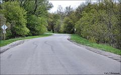 Skid Marks (John Neziol) Tags: kjphotography nikon nikondslr nikoncamera outdoor ontario brantford skidmarks road pavement tree trees forest sign