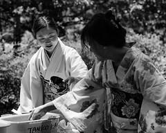 Ceremony-After Chore (minus6 (tuan)) Tags: minus6 houston mts japanfestivalhouston hermanpark d810 85mm kimono