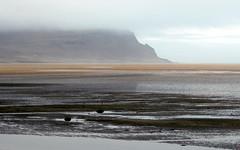 orange stripe (kexi) Tags: iceland europe wild north wilderness orange landscape view paysage stripe raudasandur canon may 2016 instantfave beach coast ocean sand water