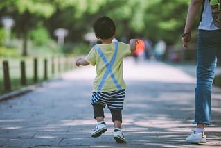 Rear view portrait of a little boy walking in the park