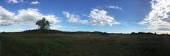 Mount Bundy Station (freelancing god) Tags: railscamp northernterritory mountbundystation railscamp21
