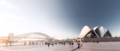 Sydney Harbour (Max Pa.) Tags: sydney harbour bridge opera house architektur architecture city cityscape australia australien sun light blue people travel canon 5d 2470mm panorama water new south wales