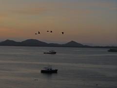 São Francisco do Sul - SC (márcio100) Tags: são francisco do sul sc natureza litoral santa catarina brasil marcio100 márcio alves mar atlântico sea ocean