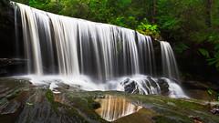 Somersby Curtain (JasonBeaven) Tags: somersby waterfall floodscreek falls water green forest australianbush centralcoast nsw australia print photo photographer jasonbeaven