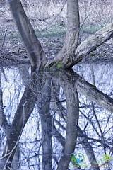 2006-April-16-0211