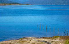 Reflecting the Blue Sky (Steve Taylor (Photography)) Tags: lakebrunner blue green brown water lake newzealand nz southisland greydistrict westcoast