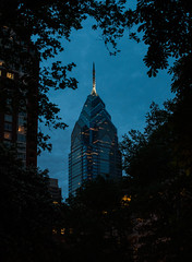 out of the blue (nardell) Tags: philadelphia philly centercityphilly cities urban urbannature citytrees trees architecture tallbuildings downtown libertyoneplace rittenhouse rittenhousesquare parks cityparks evening