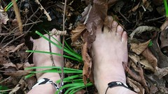 photo_2017-05-21_19-17-46 (2) (bfe2012) Tags: barefoot barefeet barefooting barefooted barefooter barefoothiking baresoles barefoothiker toughsoles feet lifestyle toes dirtyfeet dirtysoles