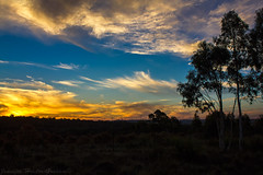 Sunset at Bannister, NSW (Jenniferhg97) Tags: sunset sun bannister trees wind turbines clouds sky skyscape landscape new south wales nsw australia rural