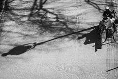 L'ombre du réverbère - Paris (Remy Carteret) Tags: paris canon 5d mkii mk2 markii france eos remycarteret rémycarteret canon5dmarkii canon5dmark2 canoneos5dmarkii canoneos5dmark2 5dmark2 5dmarkii mark2 canon5d blackandwhite noiretblanc nb noirblanc blackwhite bw humansofparis parisien parisienne parisiens parisiennes streetlife marche walk walking ombres ombre shadow shadows humains human street paris19e parisbutteschaumont butteschaumont butteschaumontbutteschaumontreverberereverberesréverbèresréverbèrelampadaireslampadairefloor lampstreet lamp reverbère banc bancs benches