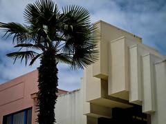 Napier, a tree and its building (kimbar/Thanks for 2.5 million views!) Tags: artdeco building napier newzealand palmtree