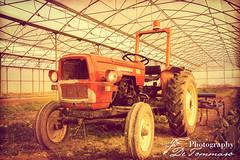 trattore (Gian Franco De Tommaso) Tags: trattore macchine agricole terra coltivare serre tractor agricultural machinery land cultivate greenhouses