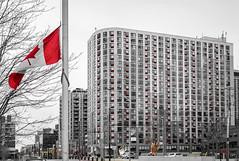 Glengrove at Maple Leaf (Toronto, Ontario) (*Ken Lane*) Tags: downtowntorontocntowerkingandspadinarailwaylandsharbourfrontwestbathurstquaysouthniagaraytz geo:lat=4363847348 geo:lon=7938776493 geotagged building can canada canadiancity canadianflag canadianseaportcity city cityoftoronto citypark citystreet corktown downtown flagpole glengroveatmapleleaf harbourfront harbourfrontcentre hogtown hollywoodnorth htopark htoparkeast littleyork martingoodmantrail muddyyork northamerica ontario outdoor park queensquayw red road roadscene selectivecolor street streetscene the416 thebigsmoke toronto travelphotography tree treebranches waterfrontpark windows winter yyz